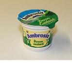 Ambrosia Custard Original